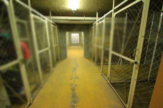 地下に物置スペースあります。1区画承継可能です。収納に便利です。