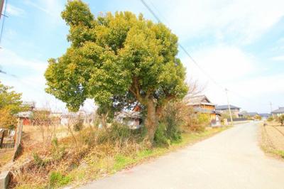 【外観】筑後市大字常用 土地