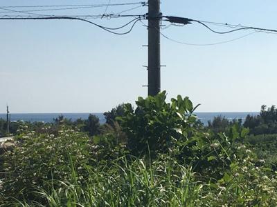 【展望】南城市 水平線の見えるのどかな土地