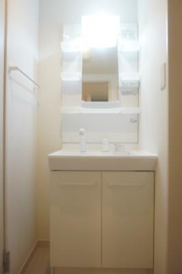 リブリ・ドリームIIの洗面台