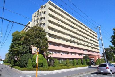 9階部分 リフォーム済 即入居可 三郷新築ナビで検索
