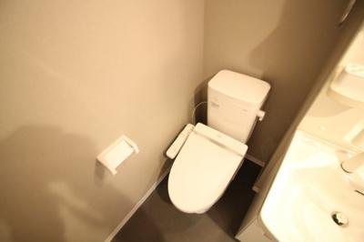 【トイレ】アリッサム