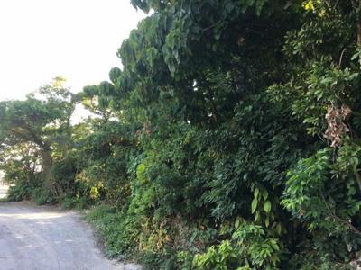 中城村屋宜(54.14坪)