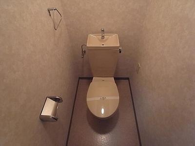 【トイレ】HU岩屋ハイツ