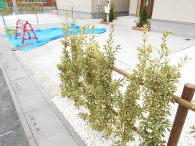 【駐車場】岩槻区 美園東 全2棟 1号棟 58坪 らすと1棟