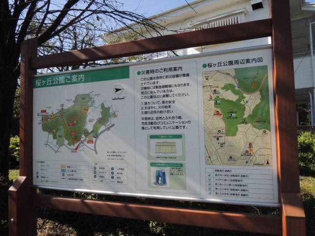 広くて自然が多い桜ヶ丘公園が徒歩3分圏内【コートビレッジ桜ヶ丘PartIIレジデンス】