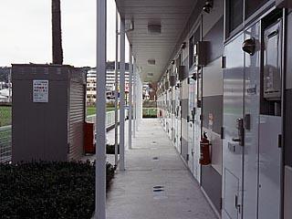 【玄関】レオパレスオラトリオ