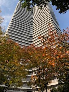 ベルパークシティの真ん中にそびえたつタワーマンション!! 緑豊かでスタイリッシュな外観は高級感にあふれていますね。