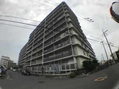 【外観】サンハイツ八尾南2号棟