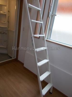 フェリスバルミーの梯子(同一仕様写真)☆