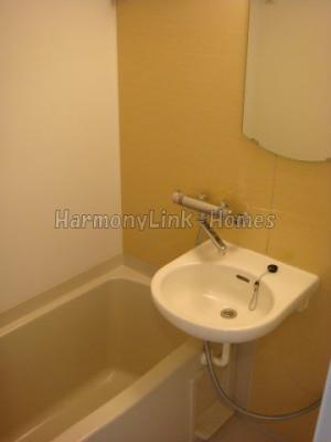 ルーブル鷺宮参番館の落ち着いた空間のお風呂です♫