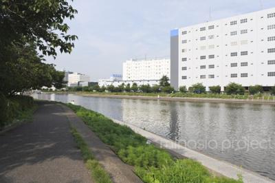 バルコニー側の河川