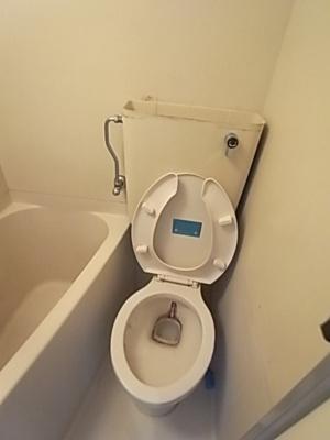 【トイレ】シティライフ相楽園