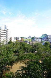隣接している公園が望め、眺望良好です☆春は桜が咲き更に綺麗です☆