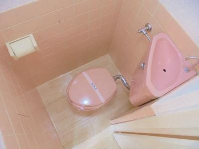 【トイレ】ハイツ510
