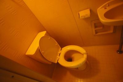 【トイレ】グロー平野
