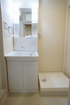 シャンプードレッサーと洗濯機置場のある独立洗面所内です。