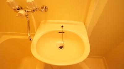 【洗面所】エンジェルシャトーⅤ