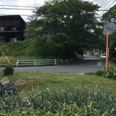北側の8m道路(東側から)