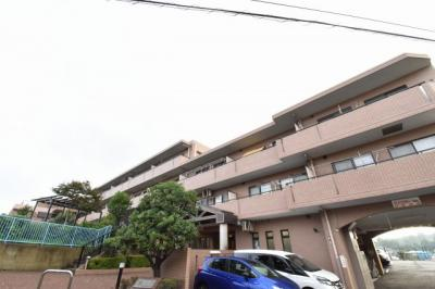 京浜急行本線「杉田」駅徒歩18分。