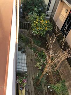 千葉市緑区あすみが丘 中古一戸建てバルコニーから庭を見下ろした写真です。