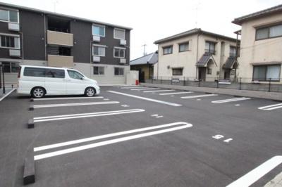 【駐車場】パームツリ―B