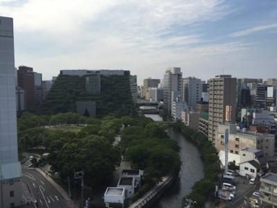 【展望】プリマヴェーラ