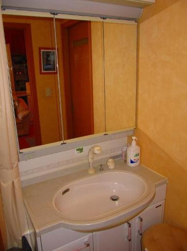 鏡の裏は「隠す収納」 散らかりがちな洗面所もスッキリ片付きます!(^^)!