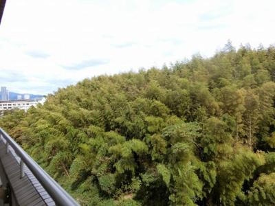 【現地写真】 バルコニーからの眺めです♪