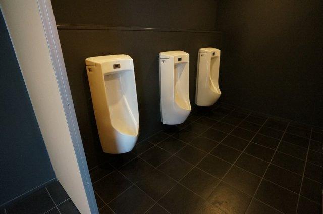 【トイレ】コズミックスⅡ