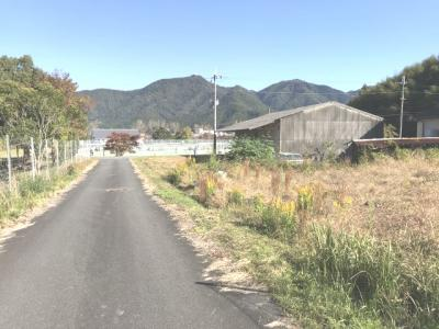 【前面道路含む現地写真】柏原売農地