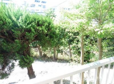【展望】木下コーポ