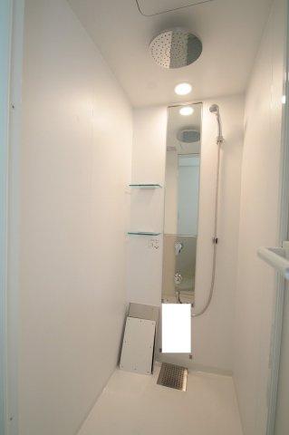 清潔感のあるシャワーユニットです。