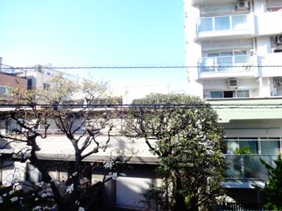 ハイツ根岸 窓からの眺望