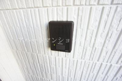 【玄関】サフィニア柏
