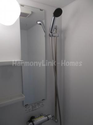 ハーモニーテラス赤羽志茂のコンパクトで使いやすいシャワールームです