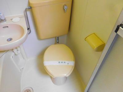 【トイレ】アンフィニィ・島上