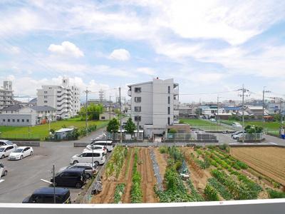 【展望】グランキューブ青山