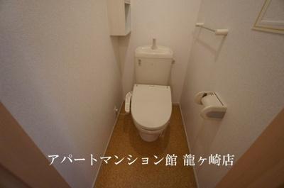 【トイレ】サクラ