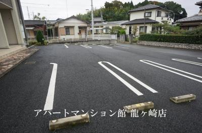 【駐車場】サクラ
