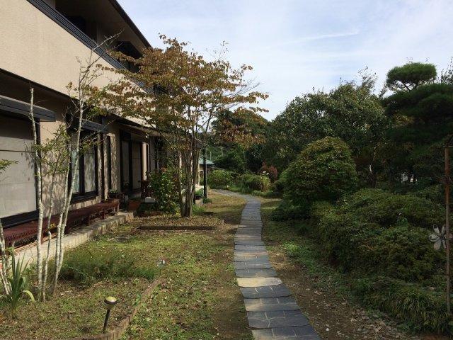 建物南側のお庭です。空間を開けてからの植栽なので、日当たりは良好です☆