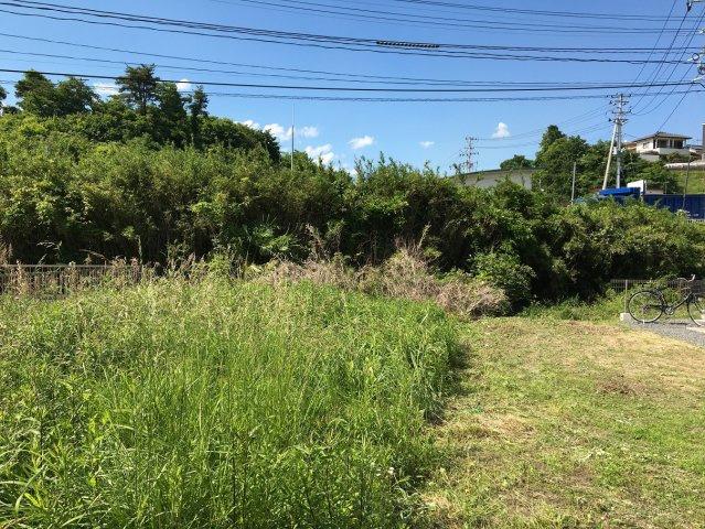 【外観】東田町金子平 A区画
