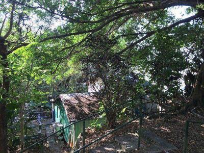 【外観】那覇市首里山川町1丁目 土地