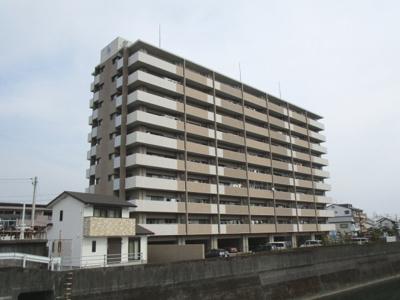 高知市ペット可分譲マンション アルファステイツ城山町 8階 3LDK