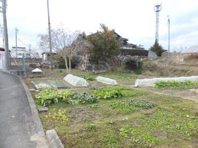 【外観】押入売地 134坪(畑)