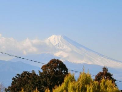世界遺産「富士山」の美しい見事な眺望