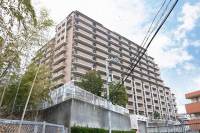 【現地写真】 外観写真♪181戸の大型分譲マンションです♪