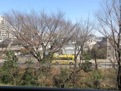 玉川上水 ジブリ美術館バス