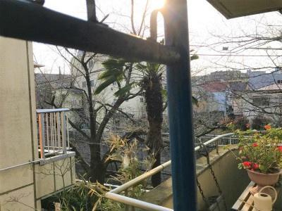 【展望】北新宿2丁目貸戸建
