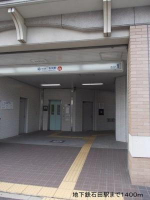 【庭】プリムローズShizu